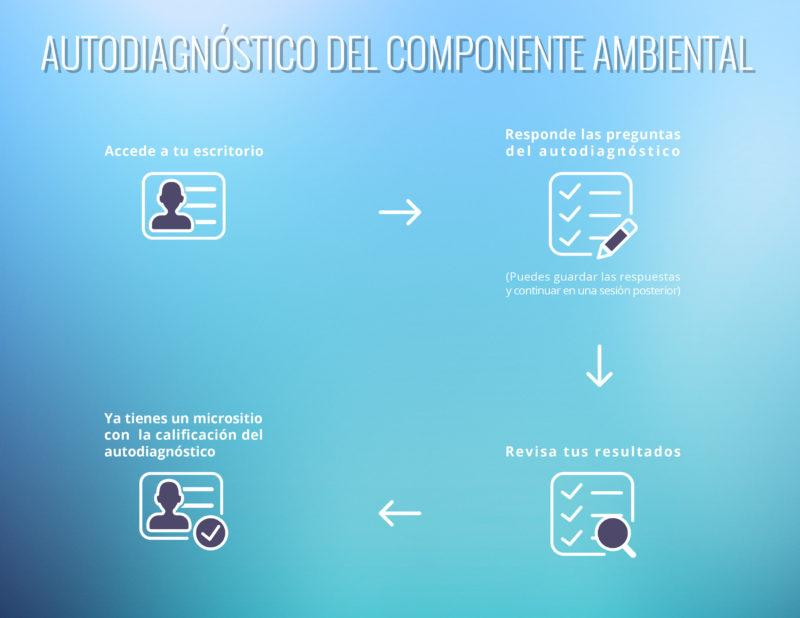Infografía autodiagnóstico